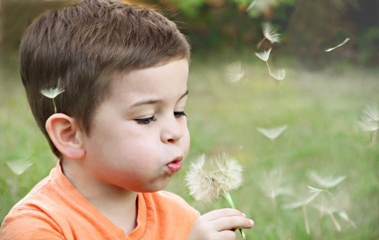 a young boy blowing on a dandelion