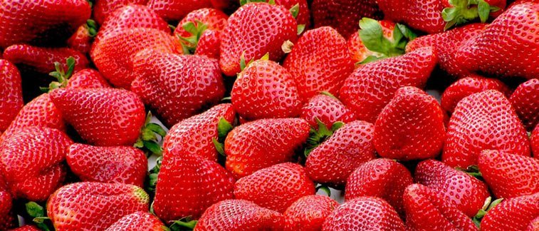 many, many strawberries