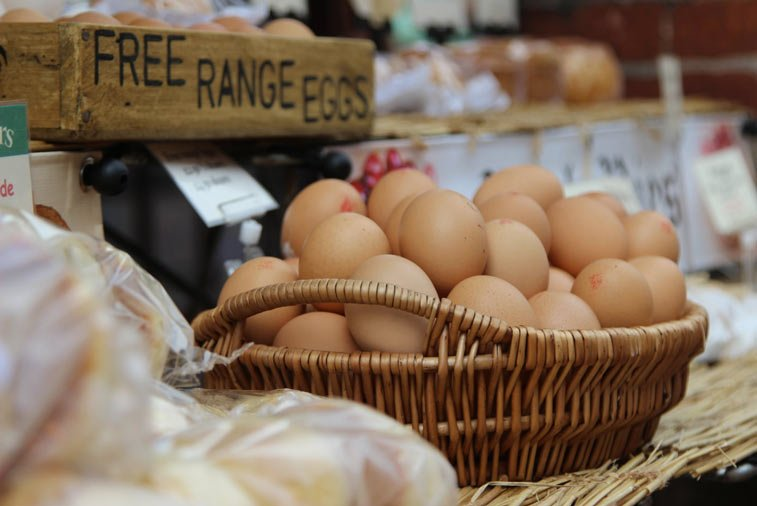 free range eggs in a basket for sale